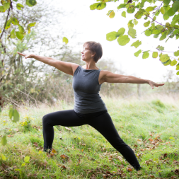 Vinyasa Yoga Overath